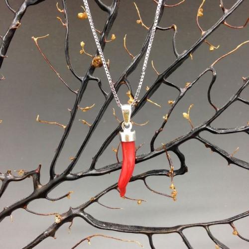 Cornetto di corallo rosso 2a misura con collana in argento 925 cm 45
